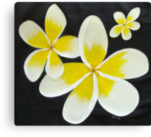 Yellow Frangipani's Canvas Print