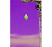Crane Purp Photographic Print