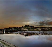 Bideford Quay Panoramic by Robert Kendall