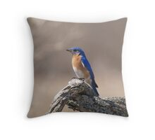Bluebird, Oh Where Can You Be Throw Pillow