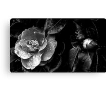 The darkness within Canvas Print