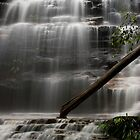 Junction Falls, Blue Mountains National Park, Australia by David Mapletoft