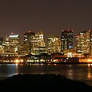 Boston at Night, Panoramic by Gothman