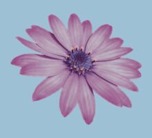 Single Pink African Daisy Against Green Foliage Kids Clothes