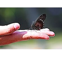 BUTTERFLY ON HAND Photographic Print