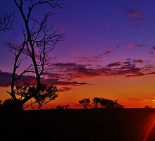 Australia's Amazing Outback by AlwaysCapture