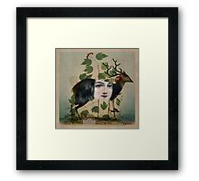 The Untold Story Framed Print