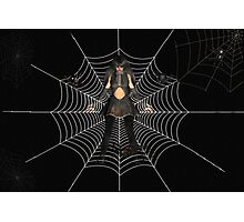 Said the spider to the Vampire Photographic Print