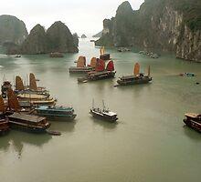 Vietnam by John Mitchell