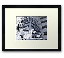 Harbingers Framed Print
