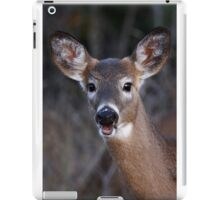 Well hello there! - White-tailed Deer iPad Case/Skin