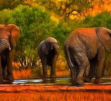 Kruger Elephants by Nicolas Raymond