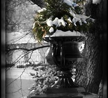 SNOWY PLANTER by CRYROLFE