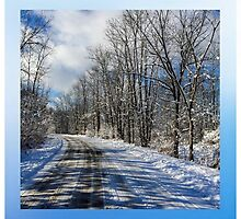 Wintry Lane by Kendall McKernon