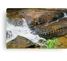 Kbal Spean Ancient Carvings in Cambodia Canvas Print