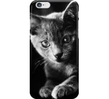 kitten I iPhone Case/Skin