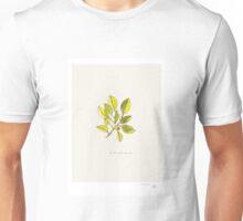 We are amazing too Unisex T-Shirt