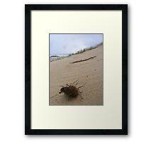 'Stormy' Framed Print