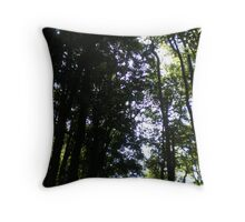 Hansel and Gretel 2 Throw Pillow