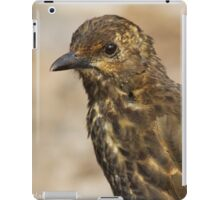 Tristan Thrush, Nightingale Island iPad Case/Skin