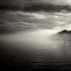 fog bank by Bill vander Sluys
