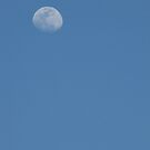 The Moon by MichelleR
