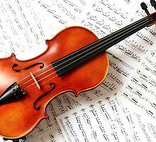 Tshirts & Hoodies violin  by udayrayapati