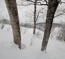 Minamisawa by Laurette Ruys