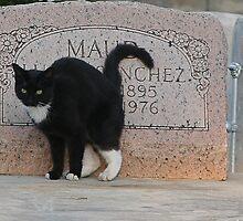Till death do us part... by Fran0723