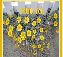 Daisy Thank You Card by judygal