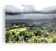 Upcountry Maui Vista Metal Print