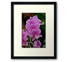 Flower Children Framed Print