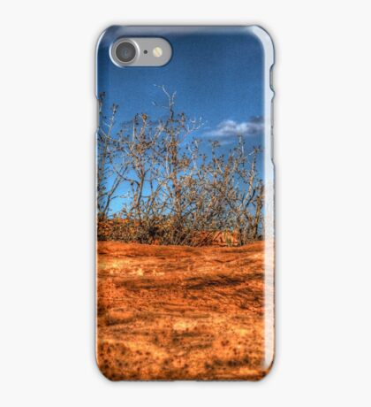 Navaho Sandstone at Horseshoe Bend iPhone Case/Skin