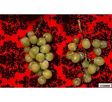 Grape Collection-3 Photographic Print