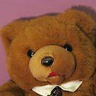 Tony The Bear by Linda Miller Gesualdo