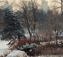 SNOW FALLS IN CENTRAL PARK by Michael Carter