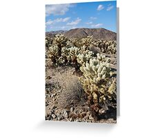 Jumping Cholla Cactus Field Greeting Card