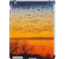 Swarm Setting – Sandhills over The Platte iPad Case/Skin