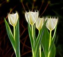 Yellow Tulips of Spring by Deborah  Benoit