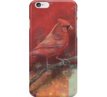 Cardinal Sin iPhone Case/Skin