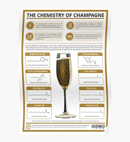 The Chemistry of Champagne Poster