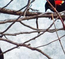Nature's Birdcage Sticker