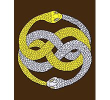 The Neverending Story - Auryn Photographic Print