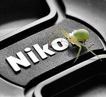 No, I'M the next Nikon Model by PamelaJoPhoto