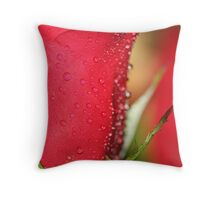 Split the difference Throw Pillow