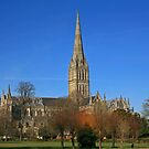 Down in the City of Salisbury by RedHillDigital
