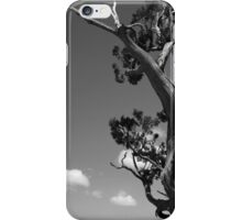 Dying Tree and Clouds 2 BW iPhone Case/Skin