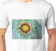 Close up of Indian Blanket Flower Unisex T-Shirt