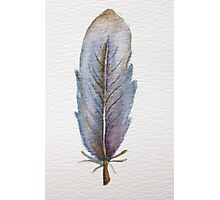 Blue Feather Photographic Print