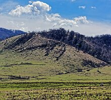 Tocile, country hill landscape from Sadu, Sibiu county, Romania by Adrian Bud